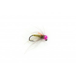 C3 Gummers Carpet Caddis PTB