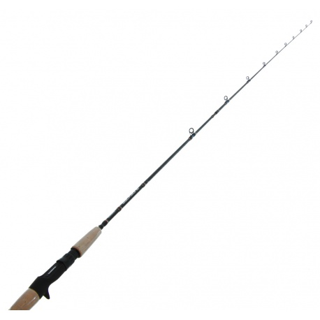 Shimano Blackbone Cast 7' 2pc jigging rod