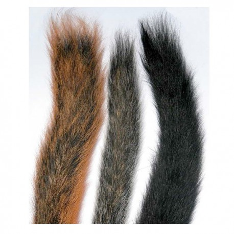 Squirrel Tails